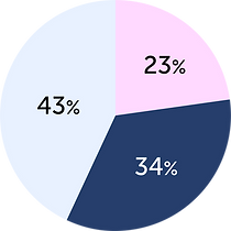 revenue dynamics pie chart-02.png