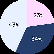 revenue dynamics pie chart-02.png
