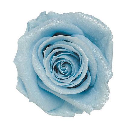 FL0106-13 Sparkling Standard Rose