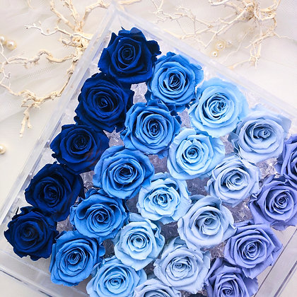 UN-0223 Twenty-five Roses in an Acrylic Box (Blue & Purple)