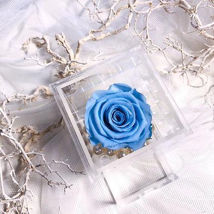 UN-0195 Single Rose in Mini Acrylic Box (Blue & Purple)