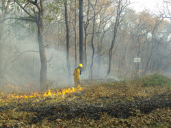 Using Drip Torch to Spread Fire