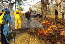 Starting Fires to Burn 10 Acres