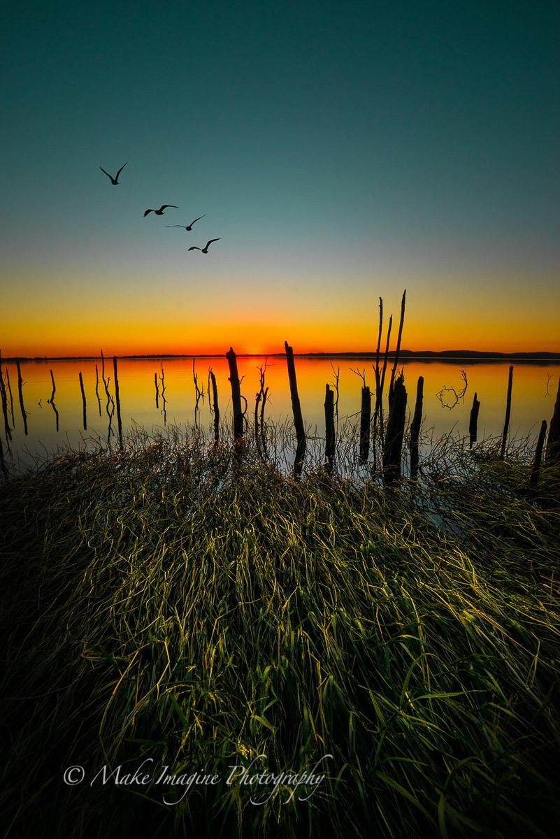 Sticks n Reeds