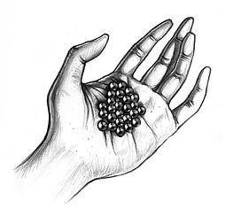 9 - pérolas na mão (Large).jpg