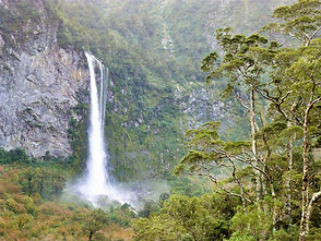 Fiordland 7 (Large).JPG