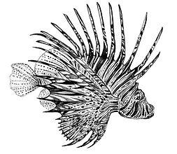 14 - red lion fish (Large).jpg