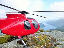 Fiordland 3 (Large).JPG
