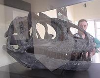 DSC03804_réplica_de_um_crânio_gigantes