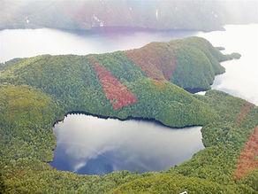 Fiordland 1 (Large).JPG