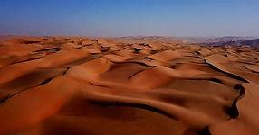 Arabian desert 3 (Large).jpg