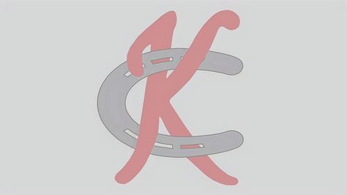 KC%25252525252525252520WHITE_edited_edit