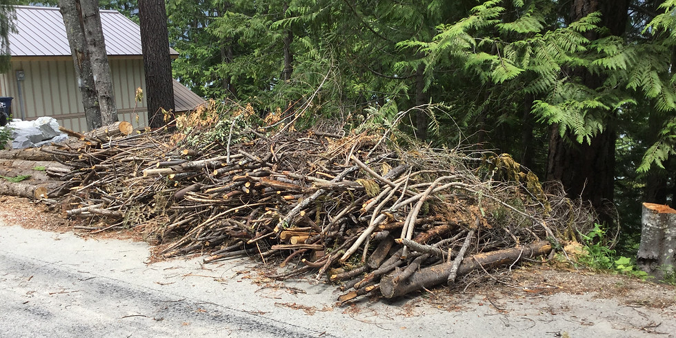 Edelweiss Community Chipping Event