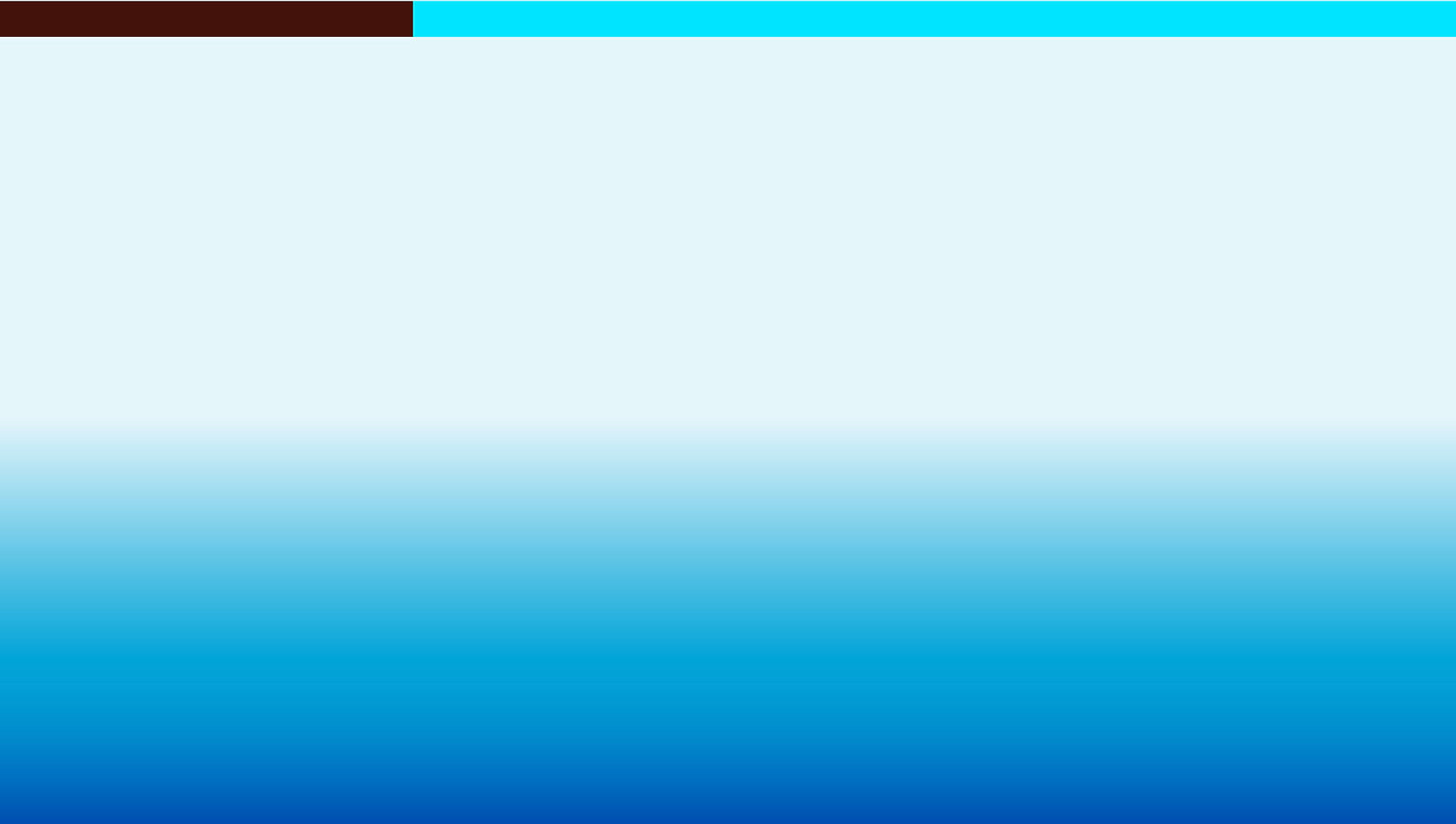 FONDO (1).jpg