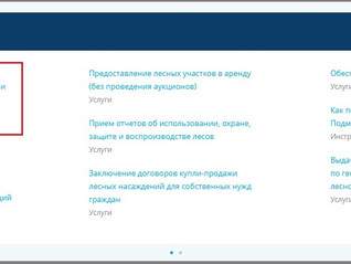 О возможности приведения сведений о  земельных участках в соответствии с ЕГРН.