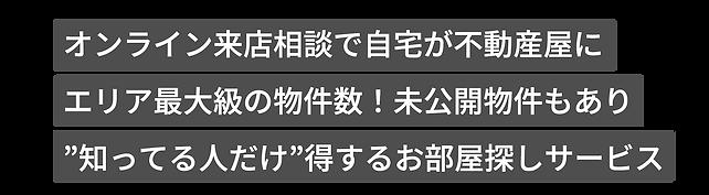 kyachi_edited.png