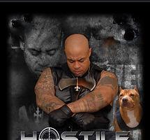 Hostile Book Cover NEW.jpg