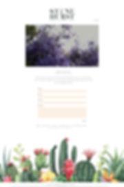 The_Stonehurst_Web.jpg