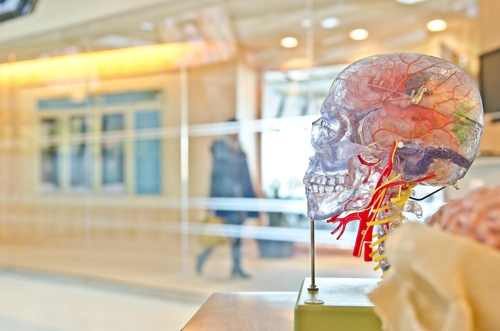 neurological speech disorders