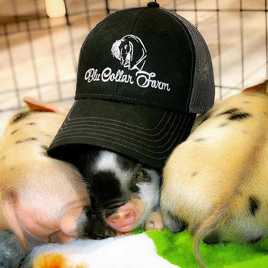 Custom Mesh Back Hats