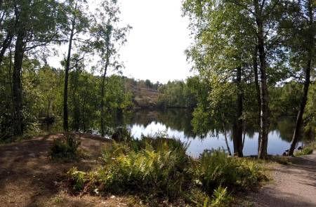 Lake-Forest-Helsinki-Finland.jpg