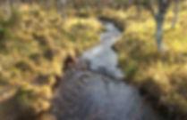 Green-Grass-River-Saariselkä-Finland.jpg