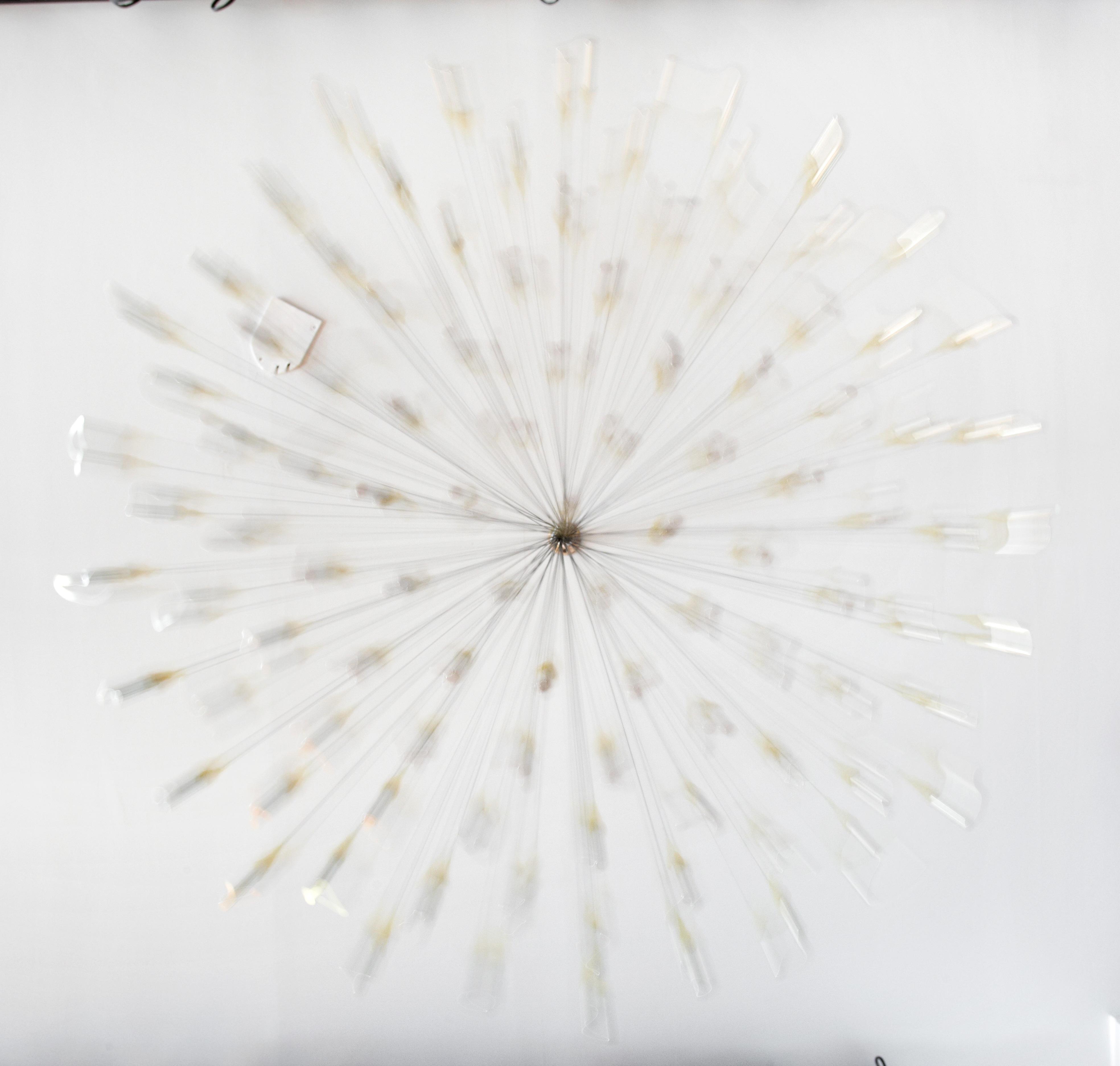 untitled (101 v.2), in motion, 2011