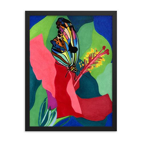 Caribbean Butterfly Framed Poster