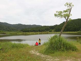 遊客在雙連埤邊賞景.jpg