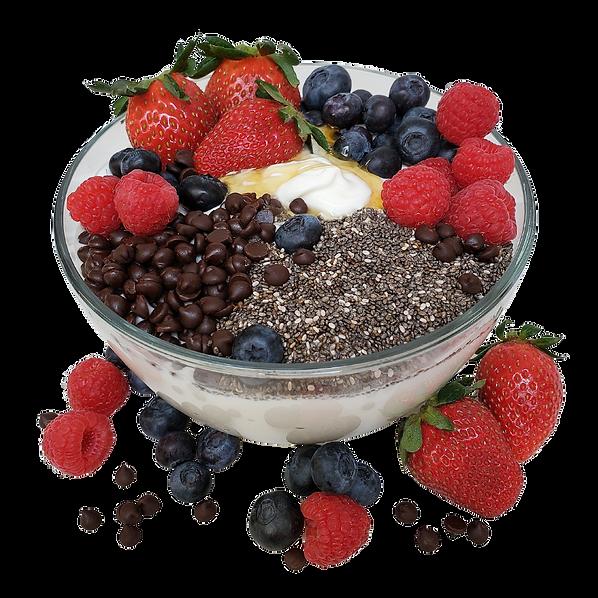 SBC yogurt bowl - transparent.png