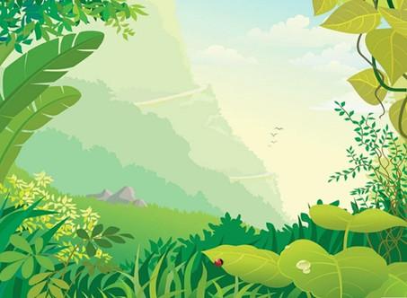 Путешествие по миру природы