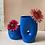 Thumbnail: Flower Vase form Blue Savanah (bajo)