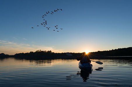 Lady kayaking at sunset with geese flyin