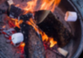 This pictures shows marshmellows roasting on a fire.