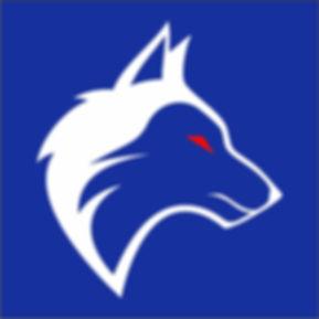 Logo Italian Braap