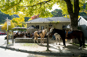 The Fork & Tap, Arrowtown