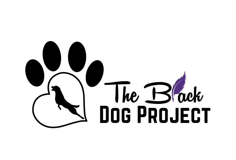 TBDP Transparent Logo