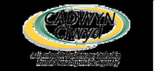 cadwyn-clwyd-logo-3.png