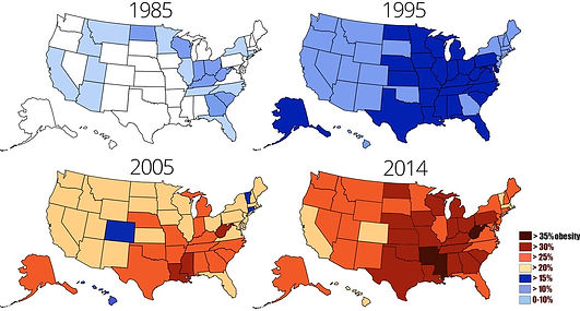 Obesity in USA over different years chart