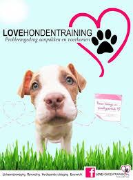 love hondentraining
