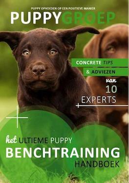 Puppygroep benchtraining