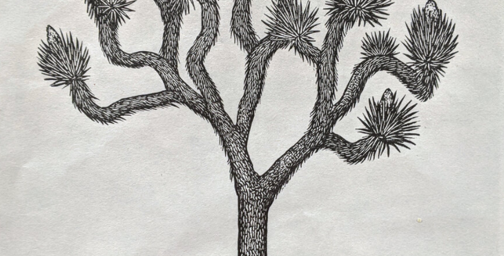 Joshua Tree Print : Anomal Press