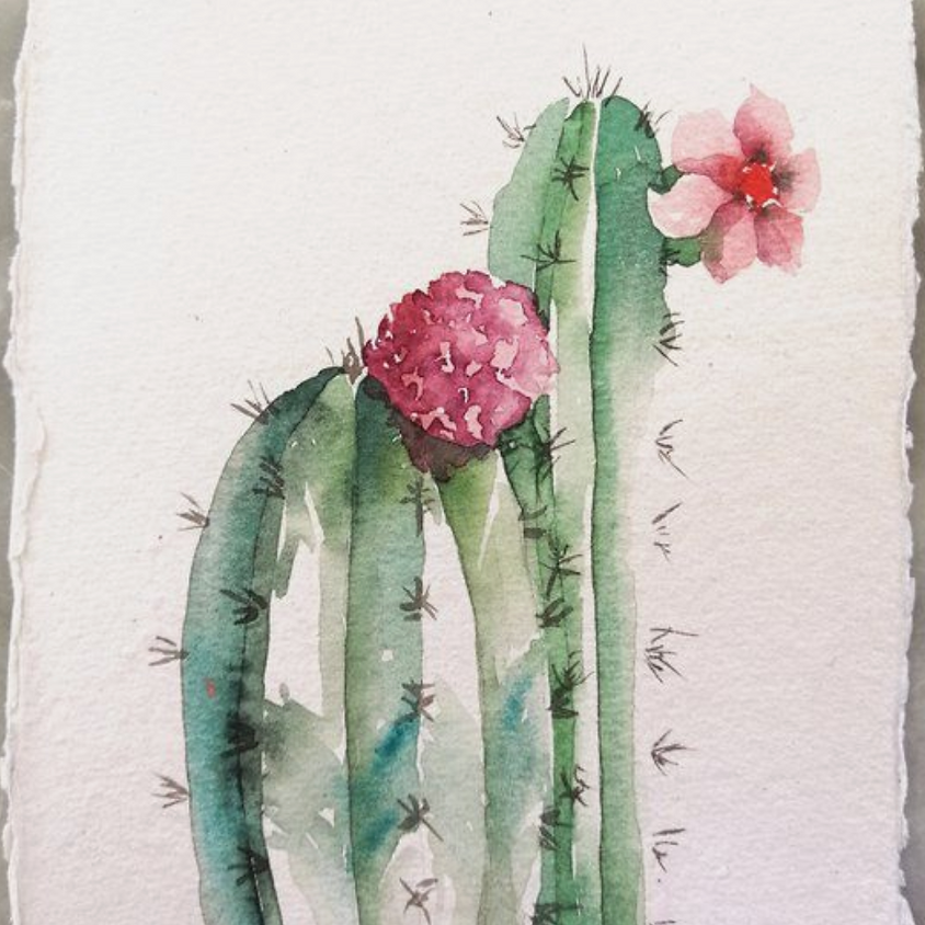 Exploration in Watercolor