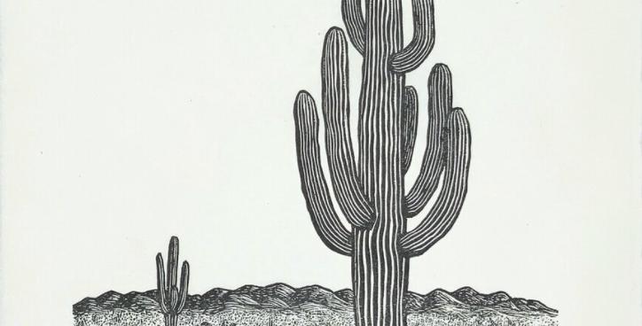 Saguaro Print : Anomal Press