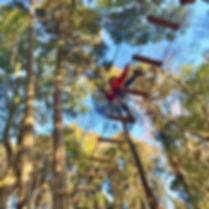 forest adventure 千葉.jpg