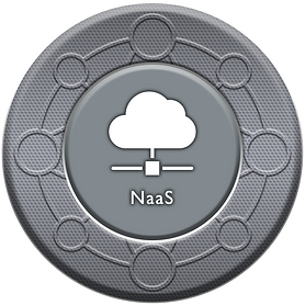 NETWORKS ICON (NaaS) v1.png