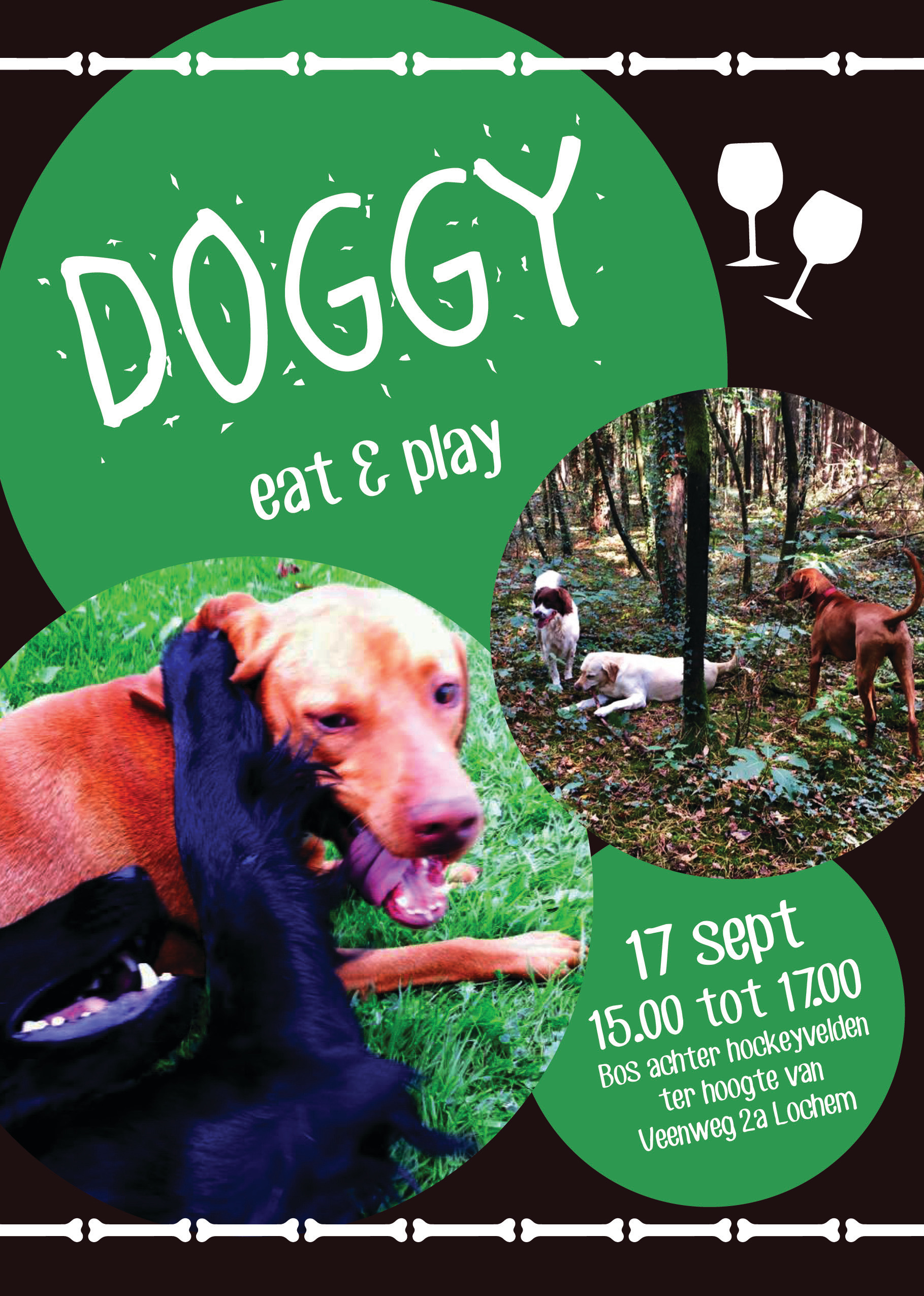 Flyer doggy eat & play