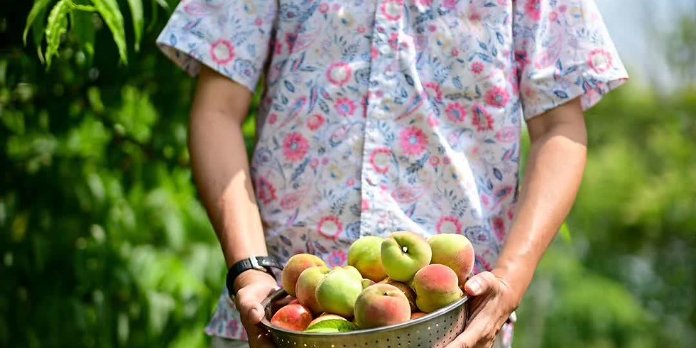 Biking and Fruit Picking at Lien's Farm Estate