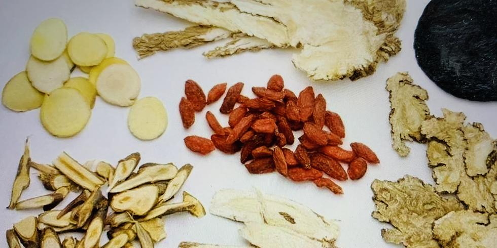 Traditional Chinese Medicine Basics