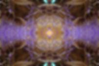 alcachofra 10.jpg